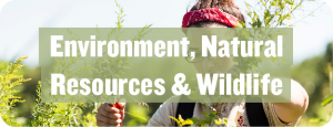 Environment, Natural Resources & Wildlife